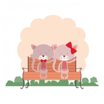 Lindo casal de gatos sentado na cadeira do parque