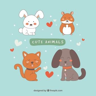 Lindo conjunto de animais de estimação sorrisos