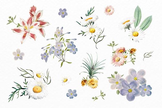 Lindo conjunto de flores coloridas