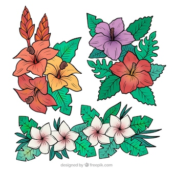 Lindo conjunto de mão desenhada flores tropicais