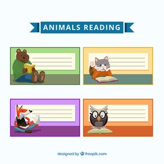 Lindo conjunto de notas com animais