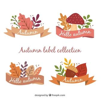 Lindo conjunto de rótulos de outono mão desenhada