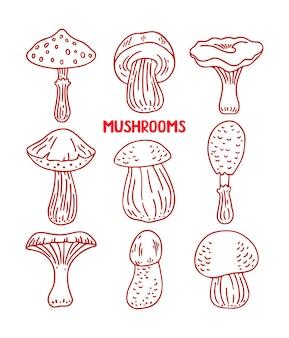 Lindo conjunto de vários tipos de cogumelos de desenho. ilustração desenhada à mão