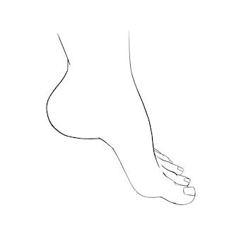 Lindo desenho de pés femininos descalços