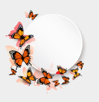Lindo fundo de borboleta e vale-presente