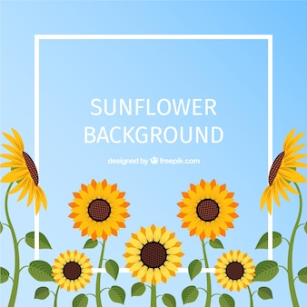 Lindo fundo floral com design plano