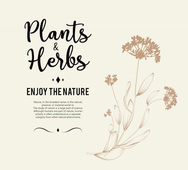 Lindo fundo floral. elemento para cartão de design ou convite