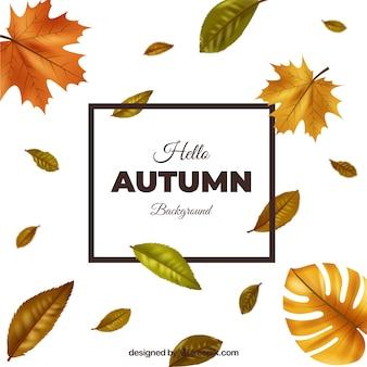 Lindo fundo outono com design realista