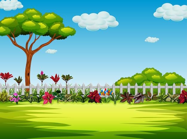 Lindo jardim com a árvore e o arbusto