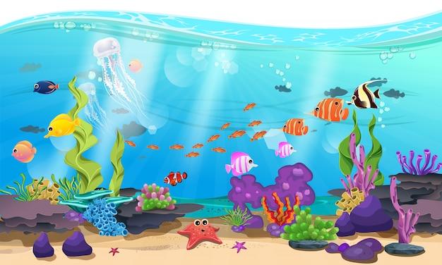 Lindo mar com coral, recife e peixe