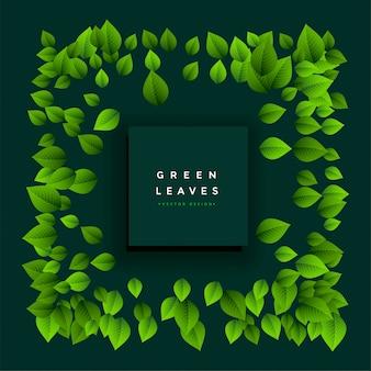 Lindo quadro de folhas verdes com espaço de texto