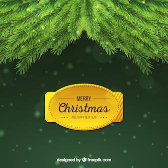 Lindos fundos decorativos de feliz natal