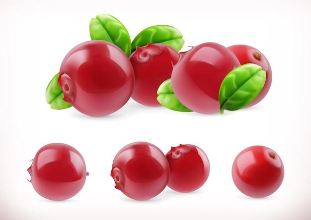 Lingonberry. fruta doce de airela. baga da floresta.