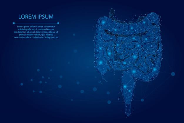 Linha de meah abstrata e intestinos poligonais de ponto. ilustração em vetor wireframe poli baixa