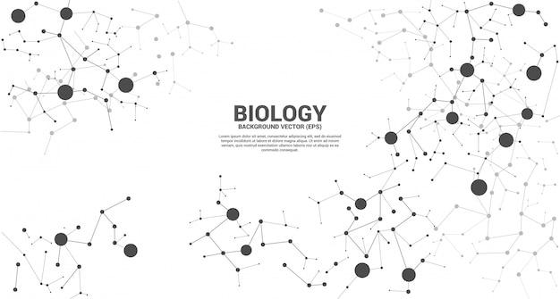 Linha de rede conectando o fundo da molécula de ponto. conceito de biologia química e ciência.
