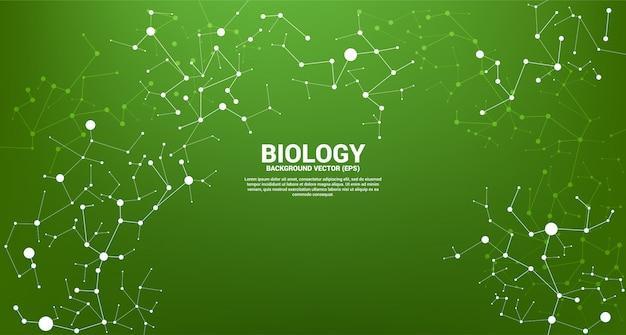 Linha de rede molécula de ponto de conexão sobre fundo verde. conceito de biologia química e ciência.