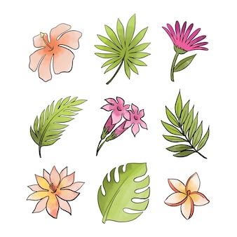 Linhas e colunas de folhas e flores