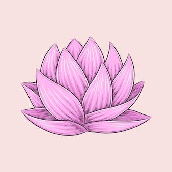 Lírio d'água nymphaeaceae mão desenho ilustração oriental