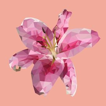 Lírio rosa poligonal, flor geométrica de polígono