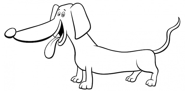 Livro de colorir de cão dachshund de raça pura