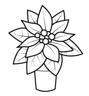 Livro de colorir de natal ou página para crianças. ilustração em vetor poinsétia em preto e branco