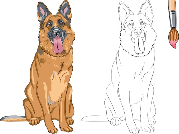 Livro de colorir de vetor para crianças de cão sorridente engraçado raça pastor alemão