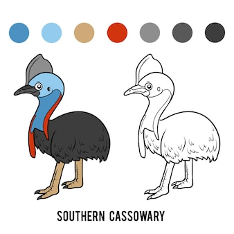 Livro de colorir para crianças, casuar do sul