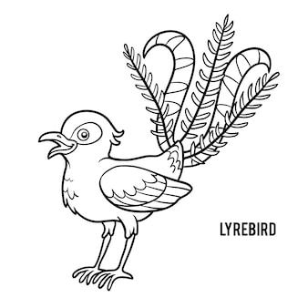 Livro de colorir para crianças, lyrebird
