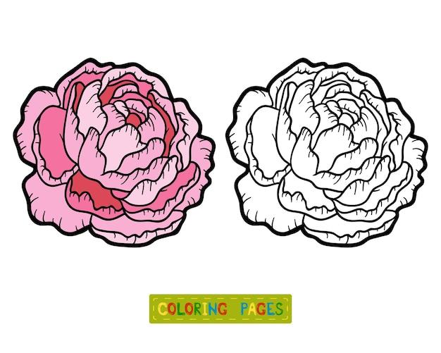 Livro de colorir para crianças, peônia flor