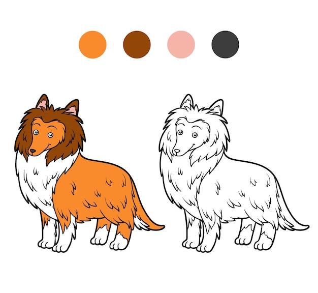 Livro de colorir para crianças. raças de cães collie