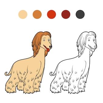 Livro de colorir para crianças raças de cães galgos afegãos