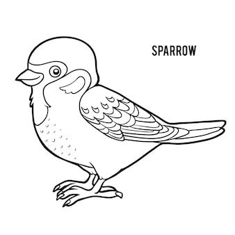 Livro de colorir para crianças, sparrow
