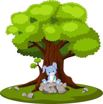 Livro de leitura de coelho e sentado na pedra