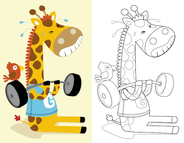 Livro para colorir ou página de girafa engraçada, levantando a barra pesada