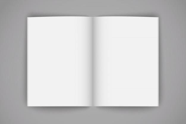 Livro vazio aberto