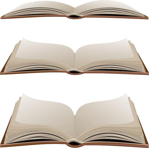 Livros de vetor isolados