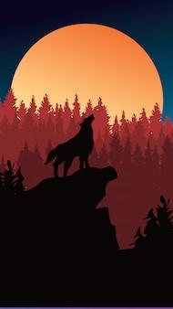 Lobo selvagem no fundo de floresta de pinheiros para perseguição de telefone