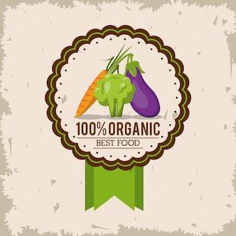 Logo colorido com brócolis de cenoura e berinjela