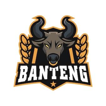 Logomarca da bull e sports