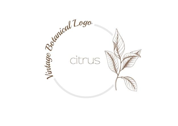 Logotipo botânico