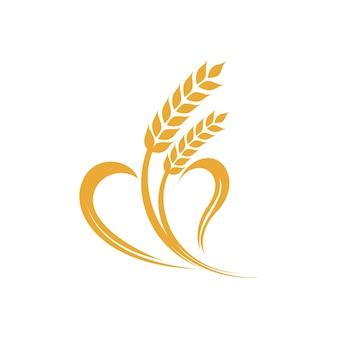 Logotipo da agricultura de arroz de trigo