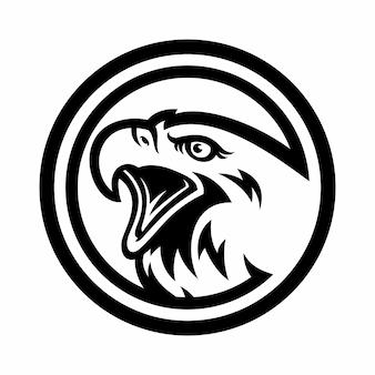 Logotipo da águia para um time de esporte