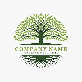 Logotipo da árvore abstrata e design de raízes