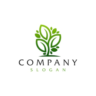 Logotipo da árvore da folha