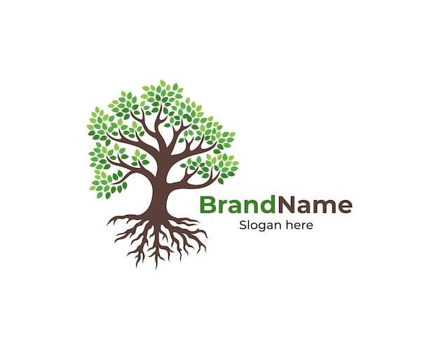Logotipo da árvore e design de raízes