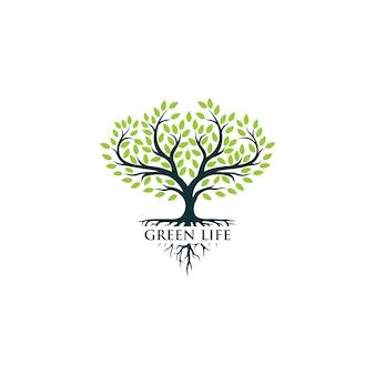 Logotipo da árvore verde