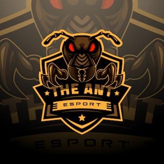 Logotipo da cabeça de formiga esport