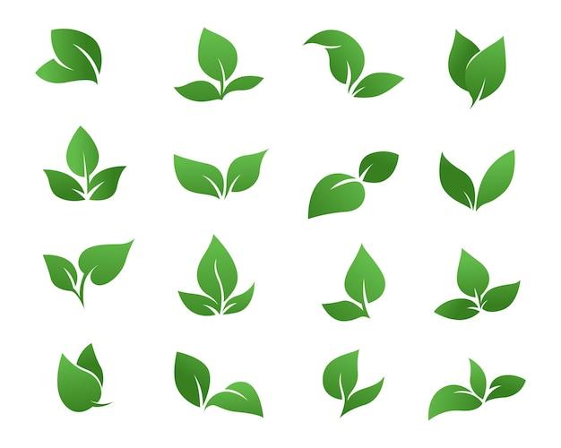 Logotipo da coleção do logotipo da folha verde da natureza
