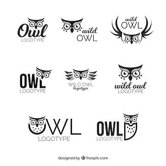 Logotipo da coruja conjunto de oito
