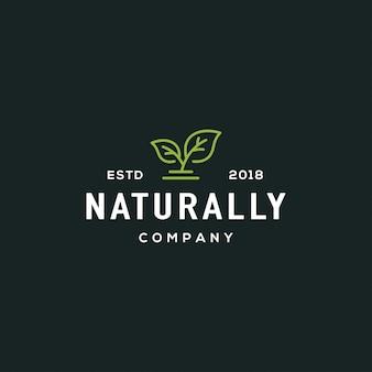 Logotipo da folha da natureza